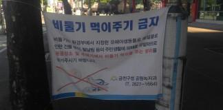 비둘기 먹이주기 금지(사진=서동휘 기자)